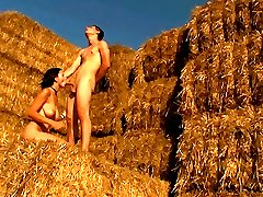 Hidden only by a stack of hay, these teens satisfy their deepest sexual desires. His cock...