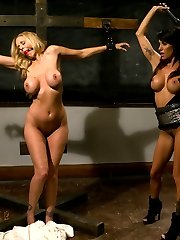 Whipped Ass Presents is proud to introduce The Debasement Of Lori Lansing, our first high...
