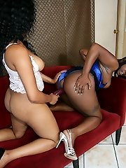 Busty Black Babes Wank Together