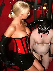 busty female domination strapon mistress ballbusting