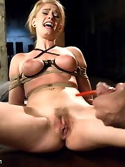 Introducing the very beautiful and innocent looking, but tough as nails, Allie James! The...