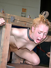 Lunch time is always a mud at RealTimeBondage. Nicki Blue is actually successful that she is allowed to eat off the floor in relative peace.
