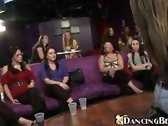 Dancing bear - Accomplish her