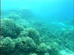 Aqua Sex 2 (Part 1 of 2)