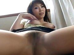 जापान नायलॉन 38