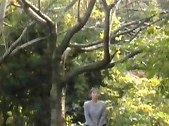 日本老式的偶像