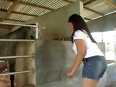 Riding Chinese dinky in the stables