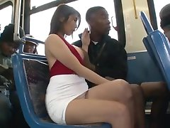 Hot Japanese Rides US Bus For