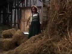 хейди -тей 5 - хайди унд умереть spritzbuben lustigen дер берге (1992)