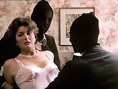 Delia林赛-因为猫(1973年)