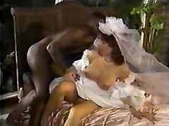 White Bride Dark-hued Cock