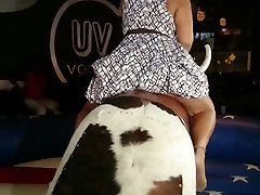 Plumper upskirt on a bull