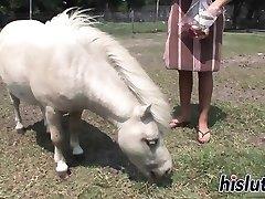 Chesty harlot rides on a donkey