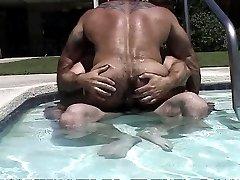 Bears In The Pool