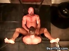 Buff gay bear getting fucked hard in the part2