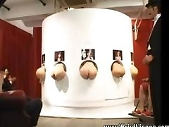 Asian donks sticking out of gloryholes