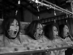četri mazi piggies