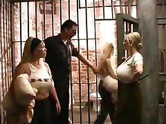 BUSTY Prison Babes