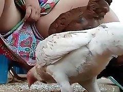 mora gledati desi bhabi hranjenje kokoši