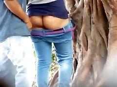 Melayu pora pagrindinių mazgų hutan