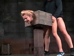 -Z19- AW Hoe in a Box