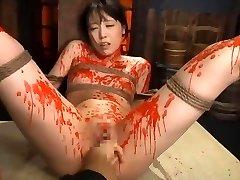 tortura japonia sm