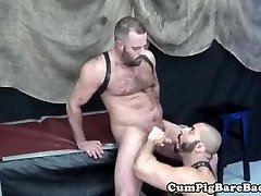 Draped leather bear enjoys anal play