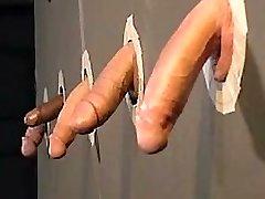Cockpride homosexuals
