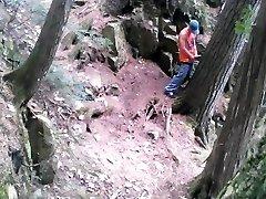 Forest stroking #2