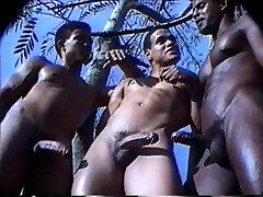 Caribbean cockfighting