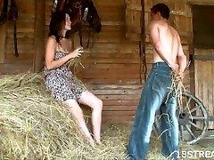 Inexperienced barn xxx show