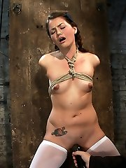 This was Allie Haze's meet and greet, this lovely girl next door is simply beautiful to sight at and most important, she enjoys Restrain Bondage!  So super-cute, so nubile, so innocent looking. Don't let looks deceive you, this little slut is all that and more.  Oh, she plays the victim well, makes all the right sounds, has the sad eyes and pouty lips but there is something fundamental that she can not hide from us. Watch how hard her nipples get and how dousing raw her pussy becomes when the ropes hit her body.  We love making this girl cum over and over, it's effortless and breathtaking.  We love it even more when the bondage gets tighter, the ropes start to delve in, the sad eyes aren't faking it anymore and the pouty lips are now twisted in real agony and ache.  This is what Frogtied is all about.