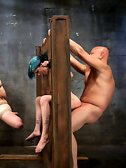 In the last installment of the instructing of red and blue, we test their sexual capability. They are tested on man meat inhaling capability, as well as their ability to please and dude sexually while being restricted.   These marionettes have come a lengthy way since the first-ever day that we embarked working with them. Both of them started out with a strenuous dream to serve, but only one will get promoted to the Upper Floor to continue instructing. The other will be dismissed with the chance to come back in the future if she so desires.   Saturday, February 5th will be a live shoot that will permit the members to vote on who is promoted and who is dismissed. I have my notes and a tally of merits and demerits, but ultimately it is up to the members.   They have been trained in anguish management, orgasm control, discipline, protocol, and slave positions. They have learned thresholds, and no what each of their bodies can deal with.