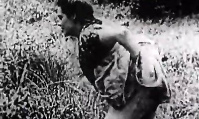 Hard Intercourse in Green Meadow (1930s Antique)
