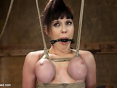 Two lovely bitches, four lovely vignettes. Since we get very positive reviews about two girl two vignette updates, here is a off the hook treat for you. Jade is brand new to bondage and agony. Downright fledgling, we bring her into the fold, creating dynamic predicaments for her fabulous body. She also gets her first-ever taste of the sybian. Overwhelmed with pleasure you get to watch her highly first moments with a very intense machine! Second is killer Nerine. She suffers a partial breast suspension and very hard standing back arch in high heels. Both expose her helpless vulva and baps, and both she is quite obviously taken advantage of.