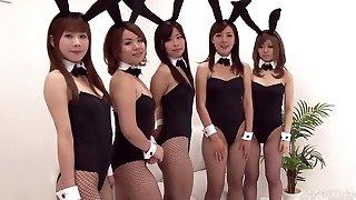ázijské bunny bang-out (necenzurovaný java -)