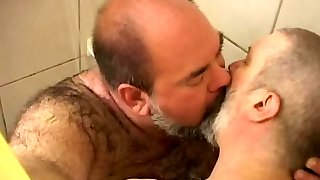 lihav ja karu