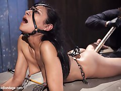 Beretta is back and Orlando will be her handler for the day. She is locked into the first device and her body is instantly under stress. The pain increases her uncomfortable suffering, and it will continue until he see fit to reward this slut.In the second scene, Beretta is in a punishing predicament position. Her feet are tormented with caning, her body abused with floggers, and her pussy is wrecked with extreme orgasms. In the final position she is face up, with her legs pulled back and her arms secure behind her. She is blindfolded and the pain continues, but the orgasms she receives are the most intense of the day.