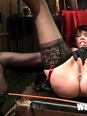 In December Maitresse Madeline auctioned off a one hour cam show for an astounding $42,000! It all went to her head and she needed to be brought down hard, but by who?!?!? Who is capable of bringing down this wicked dominatrix? We bring in legendary porn star and sexpert, Nina Hartley, to do the dirty work!!!! Nina blind sides Madeline when she least expects it dragging her through the Armory and humiliating her in front of all her colleagues and even in front of her boss, founder and CEO of Kink.com, Peter Acworth! Once Nina gets Madeline all to herself she strips her of her throne, Madeline is made to worship Nina's boots, she's strapped in bondage, whipped, slapped and finger banged! Nina sits on Madeline's face and makes her sniff and lick her pussy. Then to top it all off Madeline is caned hard until stripes are running across her body then she's humiliatingly anally violated by Nina's strap on cock  then spit on by her crew and made to clean up the filthy mess she made! Cameo appearances by many of your favorite Kink.com stars! Don't miss this rare chance to see Maitresse Madeline on the bottom and used like a filthy whore left to rot!