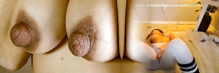Huge Puffies on Great Tits