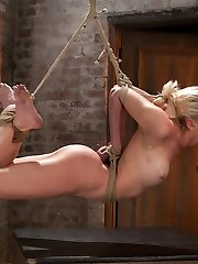 This local inexperienced girl is dealing with her first hardcore bondage porn shoot. She is shy, jumpy and doesn't know what to expect or how to action. That is what makes her special. Her reactions are priceless, they are as real as you will ever observe in a bondage shoot.