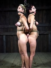 One of the best things about having a dungeon is watching the reactions of the women who are...