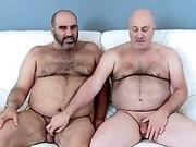 X Gay Bear Tube