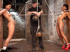 Take two of the most willing pain sluts, add rope and a sadistic fuck and you will have todays...