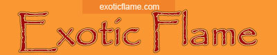 Exotic Flame Porn Tube - Free Ebony Porn