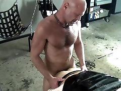 Cūku Nedēļu Gorilla Porno Geju Grupveida Seksa Orģija