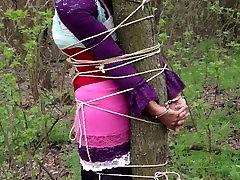 pririšo prie medžio