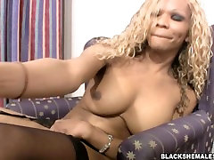 Sexy chiting mom catch tranny sucking big black shemale dick