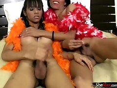 Bigtitted ladyboy girlfriends enjoy blowjob and tits sucking