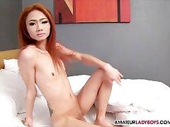 Beautiful Cock On Slender Ladyboy